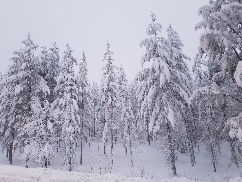 Schneemann Rovaniemi Lappland