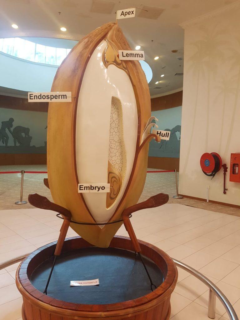 Reismuseum in Alor Setar